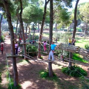 Adventure in the trees in Bollullos de la Mitación (Sevilla)