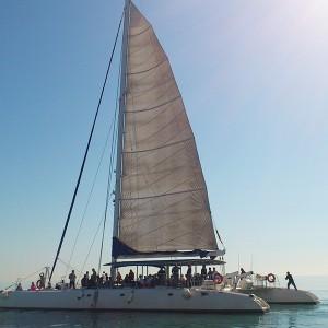 Catamaran excursion + barbecue on board in Altea (Alicante)