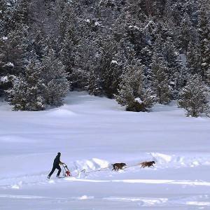Drive a sleigh 2019/20 season in Grandvalira (Andorra)