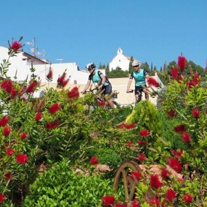 Electric bicycle excursion in Torres-Torres (Valencia)