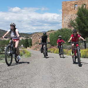 Electric bicycle excursion in Torres-Torres (Valencia)