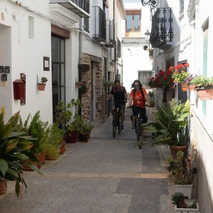Rent an electric bicycle for a day in Torres-Torres (Valencia)