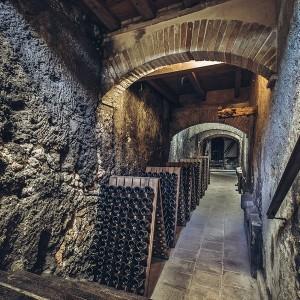 Bodega visit premium + Wine tasting in Requena (Valencia)