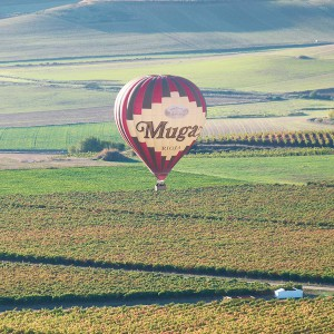 Hot air balloon flight in Haro (La Rioja)
