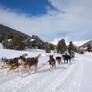 Paseo en trineo temporada 2020/21 en Grandvalira (Andorra)
