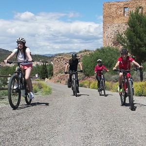 Ruta en bicicleta eléctrica a tu aire en Torres-Torres (Valencia)