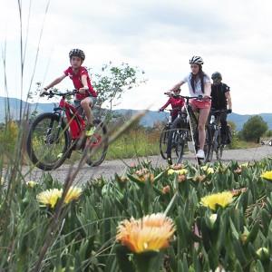 Ruta en bicicleta eléctrica en busca del tesoro de ojos negros en Torres-Torres (Valencia)