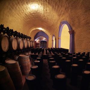 Visita a bodega + cata de vinos en Benalúa (Granada)