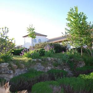 Visita a bodega con cata de vino y cava en Requena (Valencia)