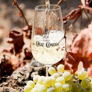 Visita a bodega subterránea + cata de vinos en Montilla (Córdoba)