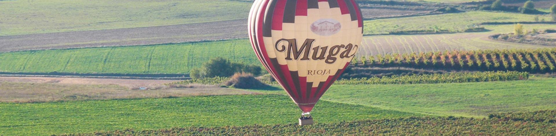 Balloon Flight Over The Vinyards
